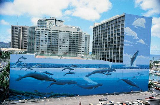 Hawaii hosszúszárnyú bálnák