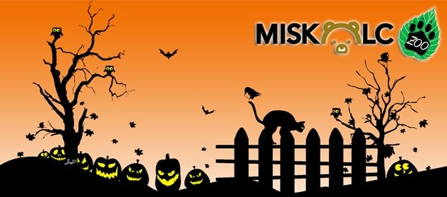 2014_halloween_miskolczoo-featured