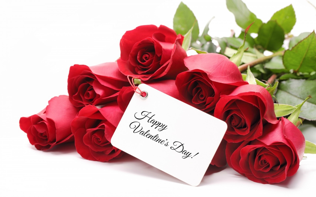 Valentine-Day-Red-Rose-Wallpapers-6