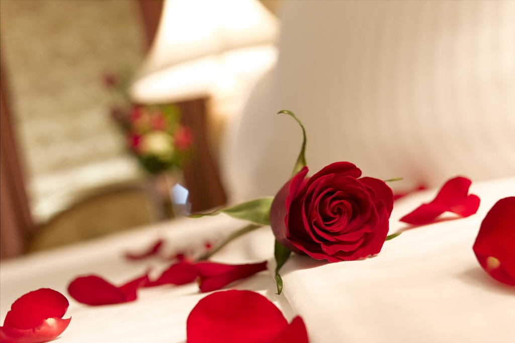 red-rose-petals-on-bed-by-brownpalace.com_