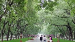 Temple of Heaven Park, azaz az Ég temploma park