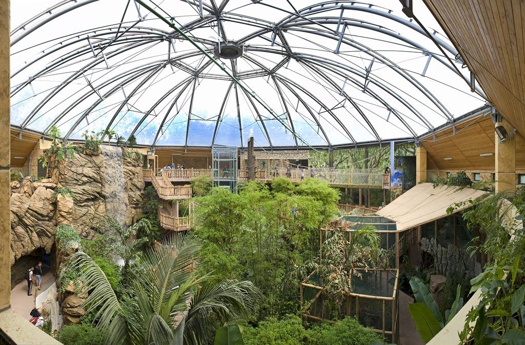 Állatpark Zöld Piramis 01
