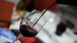 Lendületet kap a magyar borturizmus