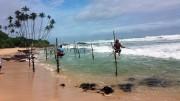 Srí Lankán a halászok cölöpökön halásznak az indiai-óceánban