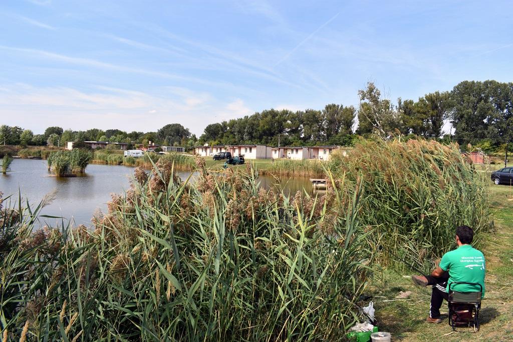 A kemping területén található 2,5 hektáros mesterséges tó a horgászok egyik kedvenc helye