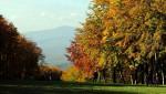 Őszi kirándulástippek a Mátrában