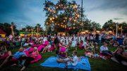 Ezen a rendezvényen garantált az igazi piknikhangulat; Fotó: Chripkó Lili
