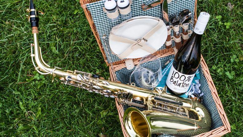 Csütörtökön kezdődik a Paloznaki Jazzpiknik; Fotók: Chripkó Lili