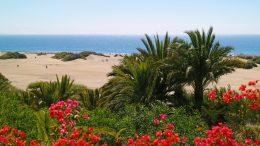 A Playa del Inglés strand Gran Canaria egyik leghíresebb turista strandja, ami Ideális családok számára is